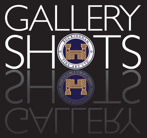 Gallery Shots - Shots of fine paintings, sculpture, fine art photography with commentary.